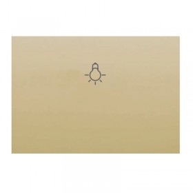 tecla-pulsador-serigrafia-de-bombilla-dorado-perla-bjc-coral-21717DP